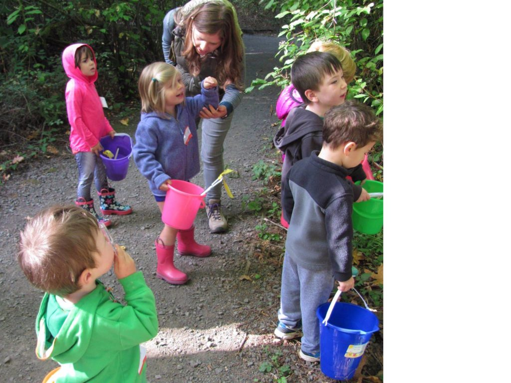 fall 2017 preschool nature walks friends of springbrook park